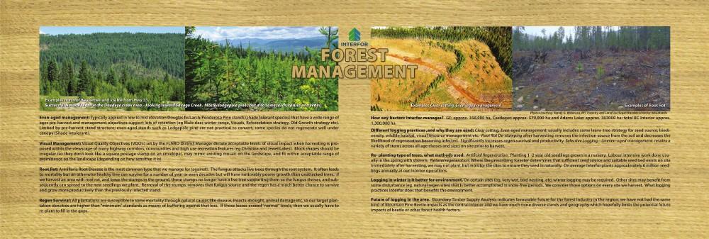 Forest-Management-bench-1000